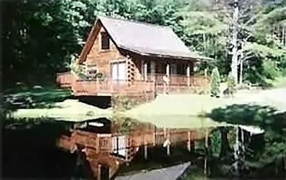 Bear Necessity Log Cabin