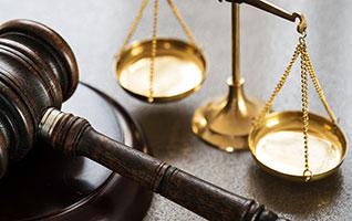 M. Ellen Davis Attorney at Law